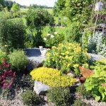 Kivikkokumpareella viihtyvät kuivahkon ja aurinkoisen paikan perennat, kuten keltakukkainen siperianunikko (Papaver croceum) takanaan loppukesällä kukkiva ukonhattu (Aconitum), valkoinen akileija (Aquilegia-lajike), punakukkainen purppurapikkusydän (Dicentra-lajike) sekä keltaisina hehkuvat keltamaksaruoho (Sedum acre) ja kultahelokki (Oenothera fruticosa).