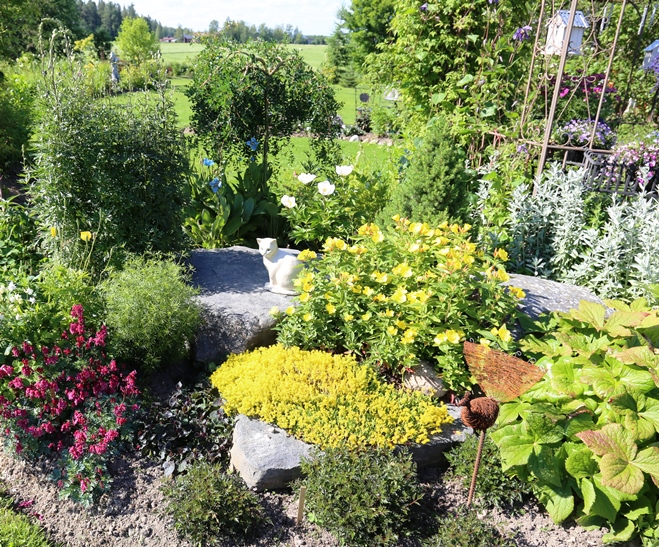 Aurinkoisen Paikan Kasvit