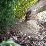 Kekkilän ohjeet herkkien kasvien talvisuojaukseen.
