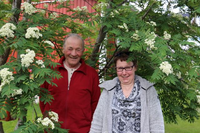 Klemet ja Sirpa Halonen pihlajan katveessa. Kuva on otettu kesäkuun lopussa (etelässä pihlaja kukki jo toukokuulla).